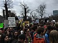 Boston Student Climate Strike 2019-03-15-18.jpg