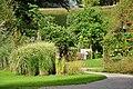 Botanischer Garten der Universität Zürich - Wildbienen 2010-08-24 17-47-36.JPG
