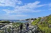 Boulders Beach, Cape Town (3).jpg