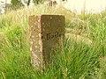 Boundary Stone - geograph.org.uk - 276668.jpg