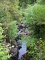 Braan Gorge - geograph.org.uk - 845201.jpg