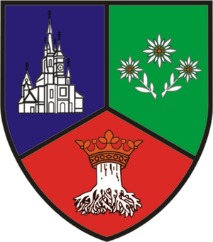 Brașov County - Image: Brasov county coat of arms