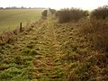 Bridleway alongside the Ackling Dyke on Bottlebush Down - geograph.org.uk - 93900.jpg