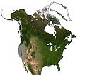 Broad-footed Mole North America Range.jpg