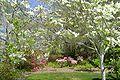 Brookgreen Gardens40.jpg