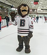 Bruno skates in Meehan Auditorium (cropped).jpg