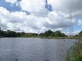 Bucher Karpfenteich 070919 01 zweiter Unterer Teich Blick nach Westen (DSC05693).jpg