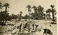 Building of the Trans-Saharan Railway in North Africa by slave labour in WWII 1941-1942 (13).jpg