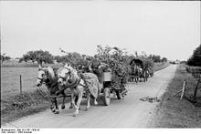 Photo d'un chariot militaire en 1944