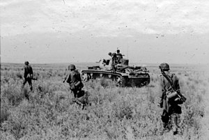 Case Blue - Waffen-SS infantry and armour advancing, Summer 1942