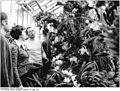 Bundesarchiv Bild 183-T0325-0009, Leipzig, Botanischer Garten.jpg