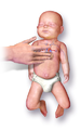 CPR Infant.png