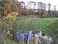 Camowen River at Cranny, Omagh - geograph.org.uk - 280117.jpg