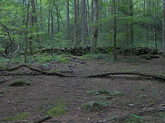 Greenbrier (Great Smoky Mountains) - Rock wall at the old Cantrell homesite on Porters Creek