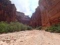 Canyon to Havasupai - panoramio.jpg