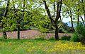 Capçaleres del Foix - 73.jpg
