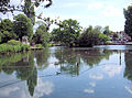 Carshalton Pond - London..jpg