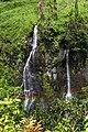 Cascades, Cirque de Salazie, Parc National de La Réunion.jpg