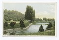 Cascades in Forest Park, Springfield, Mass (NYPL b12647398-69664).tiff