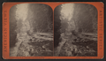 Cathedral Glen, down, from Robert N. Dennis collection of stereoscopic views.png