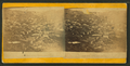 Central City, Colorado, from Robert N. Dennis collection of stereoscopic views 2.png