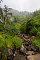 Central Province, Sri Lanka - panoramio (2).jpg