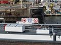 Cerambycida - ENI 06002560, Zandvlietsluis, Port of Antwerp pic5.JPG