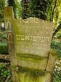 Chenstochov ------- Jewish Cemetery of Czestochowa ------- 158.JPG