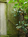 Chenstochov ------- Jewish Cemetery of Czestochowa ------- 52.JPG