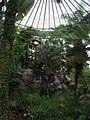 Chiba floral-museum,greenhouse.JPG
