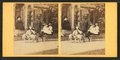 Children in a goat cart in front of house, from Robert N. Dennis collection of stereoscopic views.png