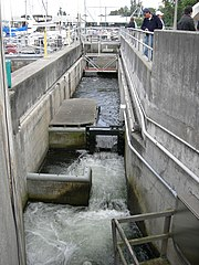 Hiram m chittenden locks map the full wiki for Ballard locks fish ladder
