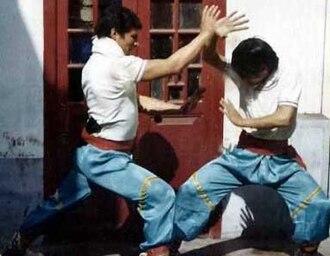 Choy gar - Image: Choy gar sifu adolfo left