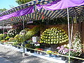 Chrysanthemum Doll and Flower Festival 07.JPG