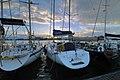 Circolo Nautico NIC Porto di Catania Sicilia Italy Italia - Creative Commons by gnuckx - panoramio - gnuckx (50).jpg