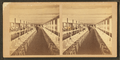 Clam House Dining Room, Rocky Point, R.I, from Robert N. Dennis collection of stereoscopic views 4.png