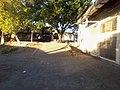 Colonia Santa Lucia, San Salvador, El Salvador - panoramio.jpg