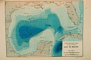USC&GS George S. Blake - Image: Contour map of Gulf of Mexico 1888