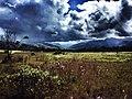 Cordillera oriental Colombia.jpg