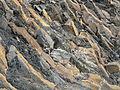 Cordoama rocks 03 (15329952284).jpg