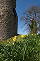 Crickhowell Castle IMG 0425.jpg - panoramio.jpg