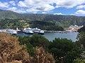 Cruise ships in port.jpg