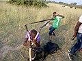Cultural play by Bagungu tribe uganda.jpg