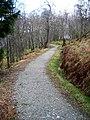 Cycleway beside Loch Venachar - geograph.org.uk - 736277.jpg
