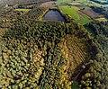 Davert Naturschutzgebiet (COE-023) Senden.jpg