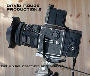David Rouge Production%27s