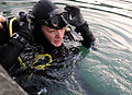 Defense.gov News Photo 111210-N-BA263-114 - Chief Master-at-Arms Cris Miller assigned to commander Task Group 56.1 conducts anti-terrorism force protection dives on a pier in Port.jpg