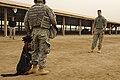 Defense.gov photo essay 090209-F-5751H-042.jpg