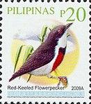 Dicaeum australe 2009 stamp of the Philippines.jpg