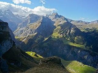 Alpine transhumance